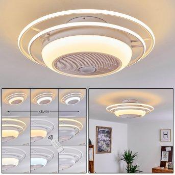 Ventilateur de plafond Sarasota LED Blanc, 3 lumières, Télécommandes