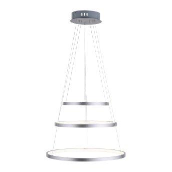 Suspension Leuchten Direkt CIRCLE LED Acier inoxydable, 1 lumière