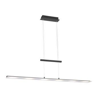Suspension Leuchten-Direkt NELE LED Anthracite, 6 lumières