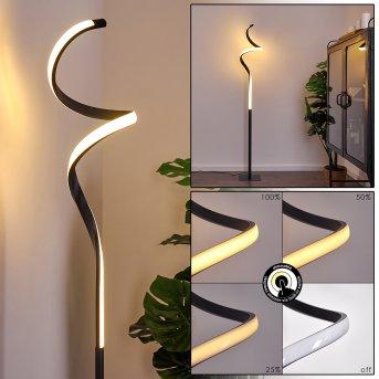 Lampadaire Pitasch LED Noir, 1 lumière