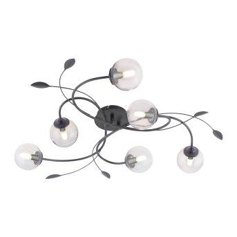 Plafonnier Paul Neuhaus WIDOW LED Noir, 6 lumières