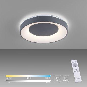 Plafonnier Leuchten-Direkt ANIKA LED Noir, 1 lumière, Télécommandes