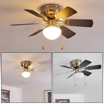 Ventilateur de plafond Trillo Nickel mat, Gris, Blanc, 1 lumière
