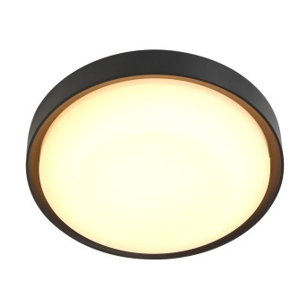 plafonnier extérieur Steinhauer Fuga LED Noir, 1 lumière