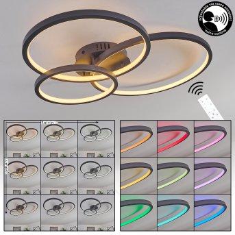 Plafonnier Moemoto LED Anthracite, 1 lumière, Télécommandes