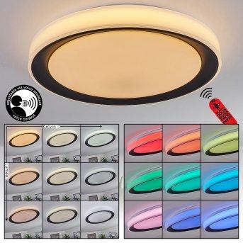 Plafonnier Gladstone LED Noir, Blanc, 1 lumière, Télécommandes