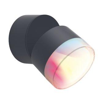 Applique murale d'extérieur Lutec DROPSI LED Anthracite, 1 lumière, Changeur de couleurs
