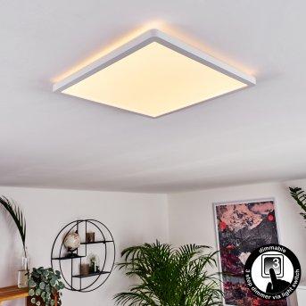 Panneau LED Boyero Blanc, 1 lumière