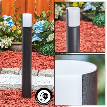Borne lumineuse Baulund LED Noir, 1 lumière