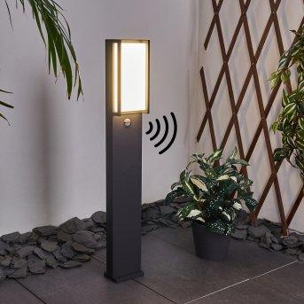 Borne lumineuse Skove LED Anthracite, 1 lumière, Détecteur de mouvement