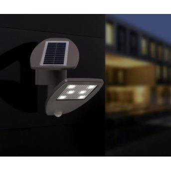 Applique extérieure LUTEC ZETA LED Gris, 1 lumière, Détecteur de mouvement