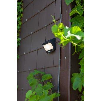 Lampe solaires Lutec TRY LED Anthracite, 1 lumière, Détecteur de mouvement