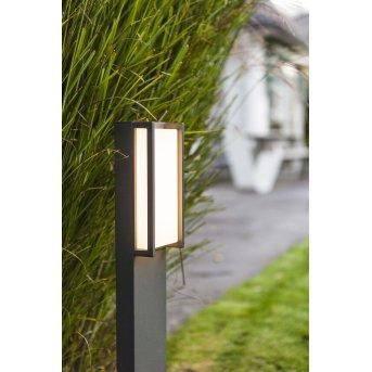 Borne lumineuse Lutec QUBO LED Anthracite, 1 lumière, Changeur de couleurs