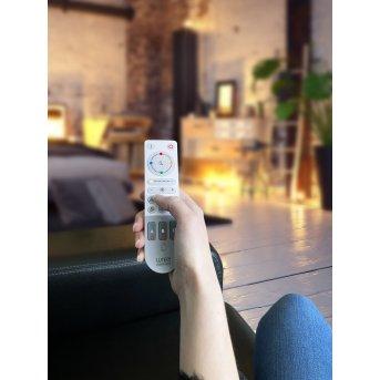 Télécommandes Lutec Remote Gris, Blanc