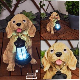 lampe solaire Sofie LED Noir, Brun, 1 lumière
