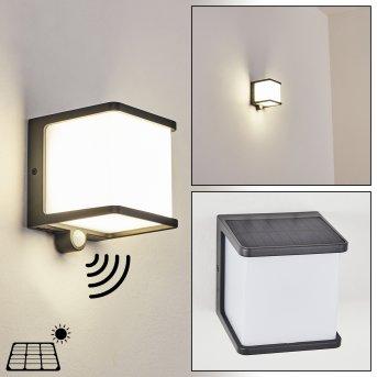 Lampe solaires Burseryd LED Noir, 1 lumière, Détecteur de mouvement