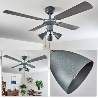 Ventilateur de plafond Marigliano Gris, Argenté