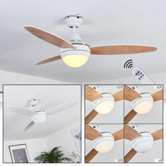 Ventilateur de plafond Beltiglio Blanc, Bois foncé, 2 lumières, Télécommandes