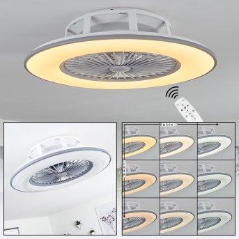 Ventilateur de plafond Marmorta LED Gris, Blanc, 1 lumière, Télécommandes