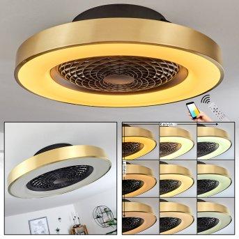 Ventilateur de plafond Penon LED Noir, 1 lumière, Télécommandes
