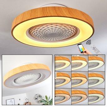 Ventilateur de plafond Penon LED Blanc, 1 lumière, Télécommandes