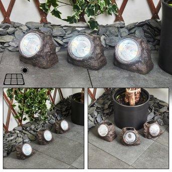 Lot de 3 lampes solaires Sameo LED Brun, 4 lumières