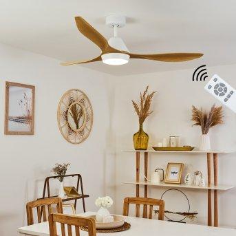 Ventilateur de plafond Follseland LED Blanc, Brun clair, Couleur bois, 1 lumière, Télécommandes