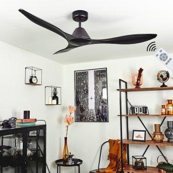 Ventilateur de plafond Follseland Noir, Télécommandes