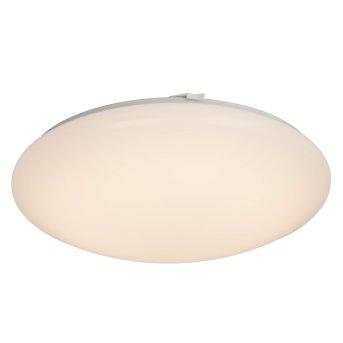 Plafonnier AEG Basic LED Blanc, 1 lumière