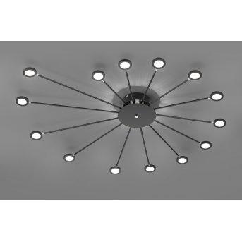 Plafonnier Trio Peacock LED Noir, 15 lumières