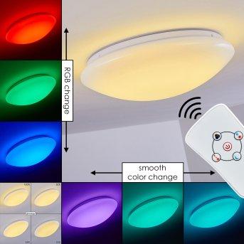Plafonnier Brighton LED Blanc, 1 lumière, Télécommandes, Changeur de couleurs