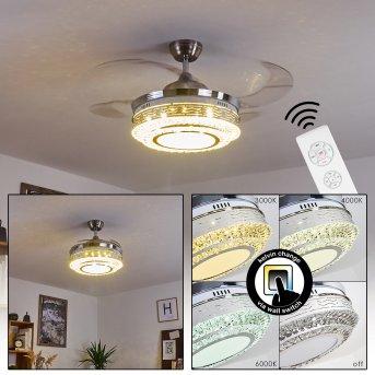 Ventilateur de plafond Bendigo LED Nickel mat, Transparent, 1 lumière