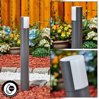 Borne lumineuse Baulund LED Anthracite, 1 lumière