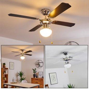 Ventilateur de plafond Valletta Chrome, Noir, Blanc, 1 lumière