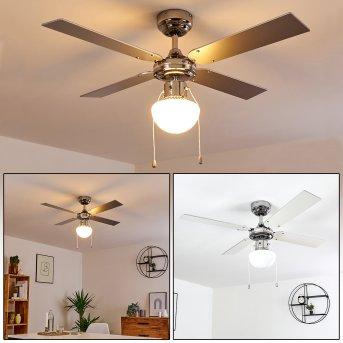Ventilateur de plafond Valletta Chrome, Argenté, Blanc, 1 lumière