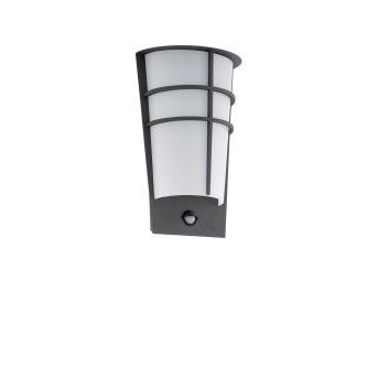 Applique murale Eglo BREGANZO 1 LED Anthracite, 2 lumières, Détecteur de mouvement