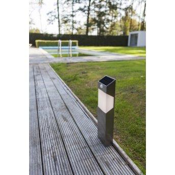 Borne lumineuse Lutec Solstel LED Acier inoxydable, 1 lumière, Détecteur de mouvement