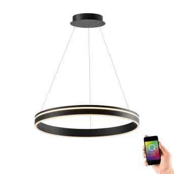 Suspension Paul Neuhaus Q-VITO LED Anthracite, 1 lumière, Télécommandes