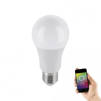 Ampoule LED Paul Neuhaus Q-BULB
