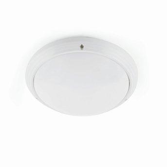 Plafonnier extérieur Faro Dakyu Blanc, 1 lumière