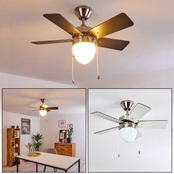 Ventilateur de plafond Ellmau Chrome, Gris, Blanc, 1 lumière