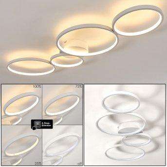 Plafonnier Rodekro LED Blanc, 1 lumière