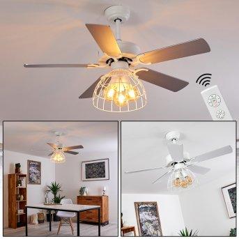 Ventilateur de plafond Izola Gris, Blanc, 3 lumières, Télécommandes