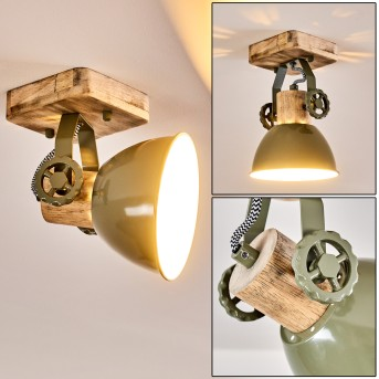 Plafonnier Orny Vert, 1 lumière