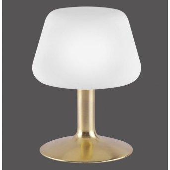 Lampe à poser Paul Neuhaus TILL LED Laiton, 1 lumière