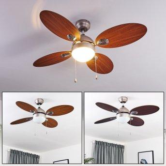 Ventilateur de plafond Nicosia Nickel mat, Bois foncé, 1 lumière