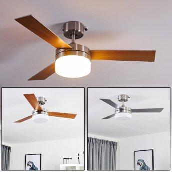Ventilateur de plafond Vevey Nickel mat, Argenté, Bois clair, 2 lumières, Télécommandes