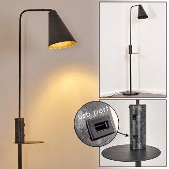 Lampadaire Terwispel Noir, Gris, Anthracite, 1 lumière