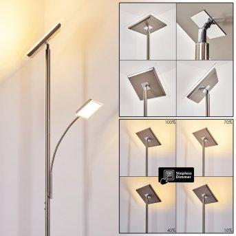 Lampadaire à vasque Veteli LED Acier inoxydable, 2 lumières