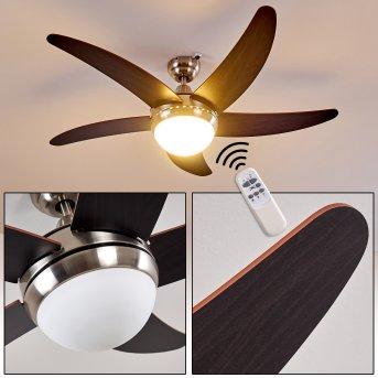 Ventilateurs de Plafond Morino Nickel mat, Brun, 2 lumières, Télécommandes